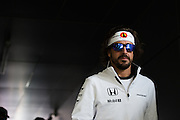October 8-11, 2015: Russian GP 2015: Fernando Alonso (SPA), McLaren Honda