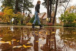 Rain on a fall day at PLU, Thursday, Oct. 20, 2016. (Photo: John Froschauer/PLU)