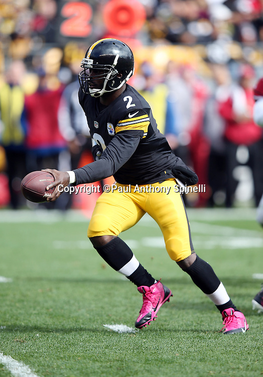 Pittsburgh Steelers quarterback Mike Vick (2) hands off the ball on a second quarter running play during the 2015 NFL week 6 regular season football game against the Arizona Cardinals on Sunday, Oct. 18, 2015 in Pittsburgh. The Steelers won the game 25-13. (©Paul Anthony Spinelli)