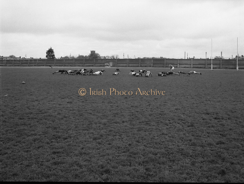 Irish Rugby Team.   (M73)..1979..11.05.1979..05.11.1979..11th May 1979..Prior to going on a tour to Australia, the Irish International Rugby Team had a light training session at the training ground in Lansdowne Road, Dublin..Image shows the Irish Team going through their training routine. Press ups being the order of the day.