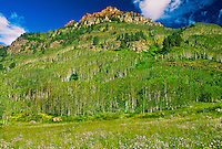Near the Maroon Bells, outside Aspen, Colorado USA