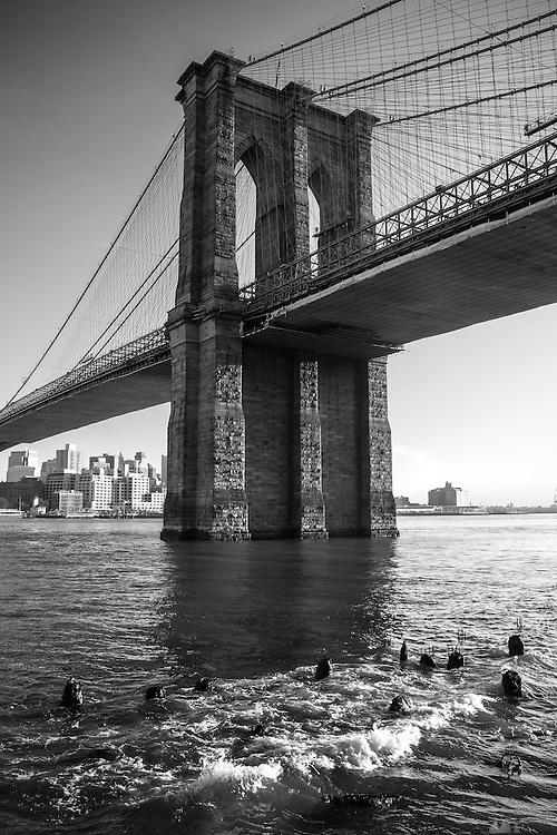 Views of Brooklyn Bridge, New York City