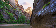 Into the narrows along the virgin river in Zion National Park, Utah, USA