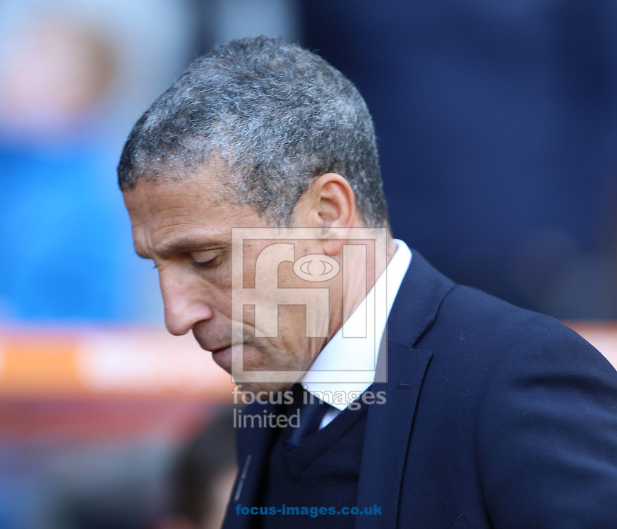 Chris Hughton of Brighton and Hove Albion during the Sky Bet Championship match at the City Ground, Nottingham<br /> Picture by James Wilson/Focus Images Ltd 07709 548263<br /> 04/03/2017
