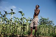 Daniel Chiyadzwa (32) mand p&aring; mark med gr&oslash;nsager, sidste &aring;r kunne de ikke bruge vandet, planterne d&oslash;de af flodvandet. Nu har de en lille have som tre familier deler med l&oslash;g, majs, squash, k&aring;lblade, tomat. Venter forsat p&aring; regn, f&oslash;r de kan plante marken med sorghum (durra), majs., <br /> <br /> Save River had been polluted by the diamond mining companies, but now it has stopped after the local community has spoken up about the problems in the court, tells mr. Matsveruka, Community maneger.