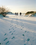 Friends walking in the distance on a snowy beach in Lomma, Sweden, Snowy Beach, Malmo, Sweden