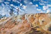 Palate Springs in Yellowstone National Park