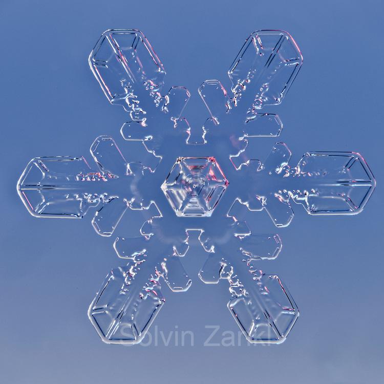 Snowflake magnified under microscope   Snowflakes   Snow Crystal   Photographs   Schneeflocke   Schneekristall   Fotografie