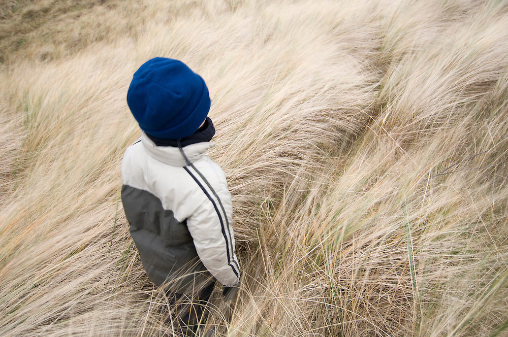 .Boy amongst  blowing marram grass, Scotland