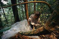 Orangutan researcher Cheryl Knott collects an orangutan urine sample from a plastic sheet placed beneath an orangutan nest.