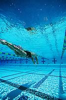 Female swimmer in pool, underwater view
