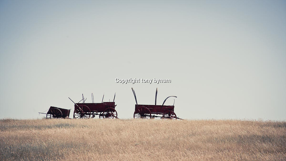abandon waggons on the prairie conservation photography - montana wild prairie