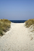 pathway in dune with blue sky