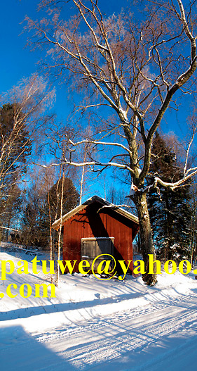 Scandinavia Finland typical Mokki red wooden house in snow