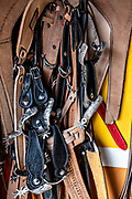 Horse saddles and bridles at a leather shop in Santiago Tuxtla, Veracruz, Mexico.