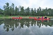 Nederland, Kekerdom, 3-6-2017Beversafari met kano in de Millingerwaard. Staatsbosbeheer maakt tochten per kano  zodat belangstellenden de natuur in de Millengerwaard echt kunnen beleven. Doel is om bevers te spottenOm het water dat via Lobith binnenkomt goed te verdelen over het Pannerdensch Kanaal en de Waal én om de waterstand te laten dalen in tijden van hoog water, is de Millingerwaard verruimd voor een betere waterveiligheid. Er is een geulenpatroon gegraven bestaande uit kwelgeulen en een grote stroombaangeul. Ruimte voor de rivier de Waal.Foto: Flip Franssen