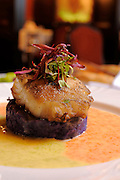 March 12, 2009; Orlando, Fla, USA;  Miso Glazed Alaskan Halibut, Purple Okinawa Sweet Potato, Duet of Caviar Sauce and Ponzu Gastric made by Chef Khalid Benghallem at the Venetian Room at the Caribe Royale...©2009 Scott A. Miller