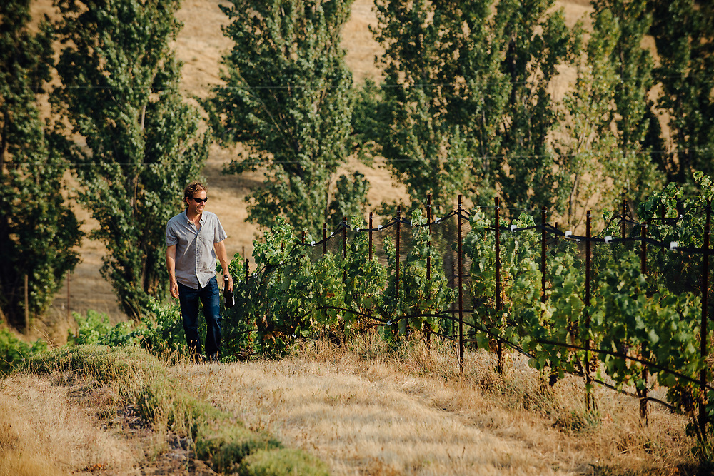 Steven Thompson winemaker at Analemma Vineyards in Mosier, Oregon.