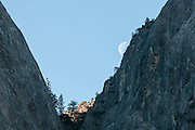 Moon rising over Cathedral Rocks, Yosemite national Park, California USA