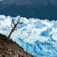 Glaciar Perito Moreno. Patagonia. Argentina. Perito Moreno Glacier
