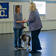 Photography was made during the WESSA Specialty Show | Obedience/Rally Trial. The event was held at WWCDTC, in Ixonia, WI, on May 6, 2018.  A beautiful Spring day!