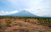 Mount Agung rising up out of the island, seen from the northeast, arid side of the volcano. Bali, Indonesia.
