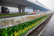 CHANGCHUN, CHINA - NOVEMBER 09: (CHINA OUT) <br /> <br /> A simulated green belt appears along the road on November 9, 2015 in Changchun, Jilin Province of China. The cloth printed plants enclosed the withered trees in the green belt in Changchun.<br /> ©Exclusivepix Media