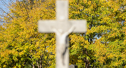 THEMENBILD - Herbst im Wiener Zentralfriedhof. Das Bild wurde am  14. Oktober 2012 aufgenommen. im Bild Kreuz vor Laubbaum // THEME IMAGE FEATURE - Autumn in Vienna at viennese central cemetery. The image was taken on october, 14th, 2012. Picture shows crucifix in front of leaf tree, AUT, EXPA Pictures © 2012, PhotoCredit: EXPA/ M. Gruber