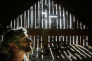 (barn savior)  --  With ambient light flooding in around old, shrunken siding to guide his way timber framer and wood worker Denis Buet searches the rafters of the Star Barn, outside of Waitsburg, for inscriptions that may reference the builders or when the barn was built.        (6/7/06)        MZ Photo
