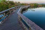 Boardwalk over Taylor Slough at dawn, Anhinga Trail, Royal Palm Hammock, Everglades National Park, Florida