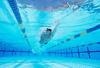 Underwater shot of young male athlete swimming in pool