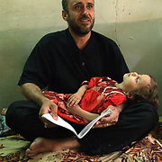 30 May 2004..Baghdad, Iraq...Mehdi martyrs...Madloom Awaid aged 36 was killed in clashes between US forces and the Mehdi army in Sadr city on the 13th May...His brother Najim aged 37 sits looking through old photos of his dead brother whilst Madloom's daughter Fatima aged 2 1/2 years sleep in his lap.....