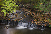 Kitchen Creek, Ricketts Glen Pennsylvania