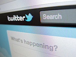 Detail of Twitter messaging internet website homepage screen shot