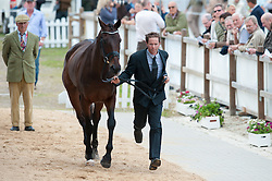 Kevin McNab (AUS) - Clifton Pinot<br /> Vet inspection - CCI4* Luhmühlen 2012<br /> © Hippo Foto - Jon Stroud