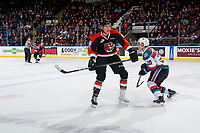 KELOWNA, CANADA - JANUARY 30: Dylan MacPherson #6 of the Medicine Hat Tigers checks Conner Bruggen-Cate #20 of the Kelowna Rockets on January 30, 2017 at Prospera Place in Kelowna, British Columbia, Canada.  (Photo by Marissa Baecker/Shoot the Breeze)  *** Local Caption ***