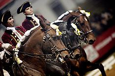 Fiera Nacional Do Cavalo 2006