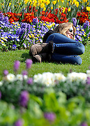 © Licensed to London News Pictures. 24/03/2012. London, UK. A woman lies amongst a colourful flower display. People enjoy the warm sunshine today 24 March 2012 in Hyde Park Central London . Photo credit : Stephen SImpson/LNP
