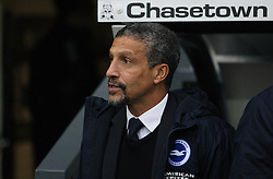 Brighton & Hove Albion Manager Chris Hughton - Mandatory byline: Jack Phillips / JMP - 07966386802 - 12/12/2015 - FOOTBALL - The iPro Stadium - Derby, Derbyshire - Derby County v Brighton & Hove Albion - Sky Bet Championship