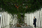 Businessmen look at tomatoes being grown by hydroponics at human resource company Pasona Inc.'s 1000-sq.m. organic rice and vegetable farm in central Toyko, Japan.