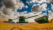 Kansas-Goodland-Wheat Harvest