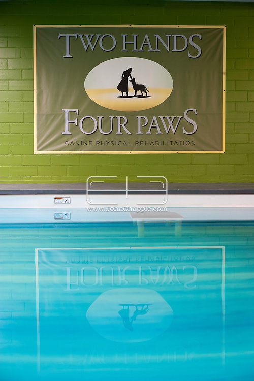 September 28th, 2011. Los Angeles, California. Canine rehab facility Two Hands Four Paws offers treatments like acupuncture, massage, and swim therapy for dogs..© JOHN CHAPPLE / www.johnchapple.com