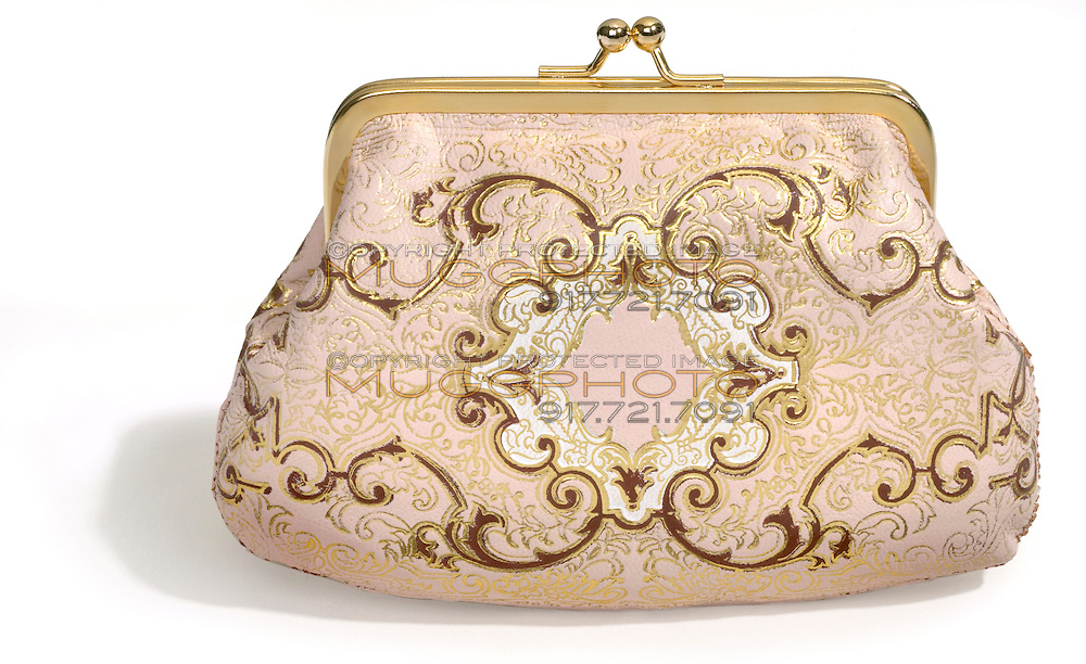vintage purse with gold clasp