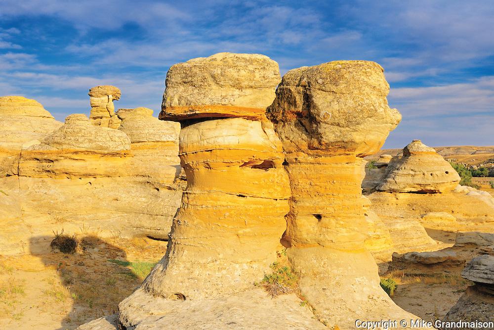 Hoodoos in badlands (UNESCO WOrld Heritage Site)<br /> Writing-On-Stone Provincial Park<br /> Alberta<br /> Canada