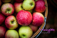 Fresh Produce.<br /> By: Marie Griffin Dennis<br /> mariefgriffin@gmail.com<br /> mariegriffinphotography.com