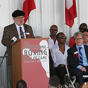 Inductee Michael Katz gives his induction speech during the 23rd Annual International Boxing Hall of Fame Induction ceremony at the International Boxing Hall of Fame on Sunday, June 10, 2012 in Canastota, NY. (AP Photo/Alex Menendez)