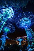 Garden Rhapsody Supertree light show, Gardens by the Bay, Singapore, Republic of Singapore