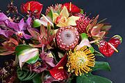 Tropical flowers, Hawaii