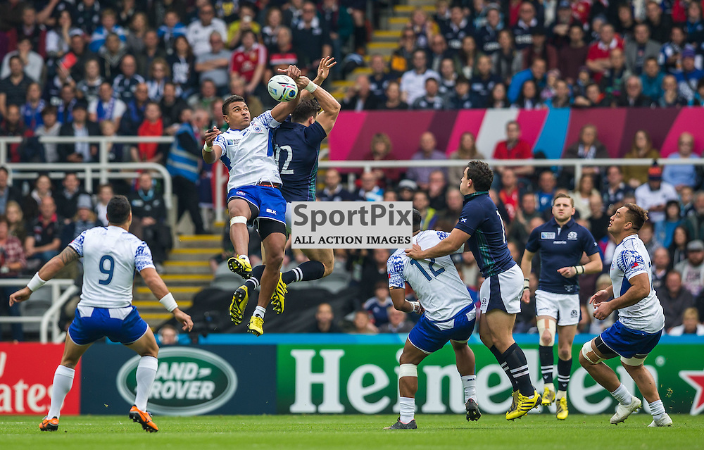 Matt Scott in action during the Rugby World Cup match between Scotland and Samoa (c) ROSS EAGLESHAM | Sportpix.co.uk