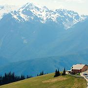 Hurricane Ridge - Olympic Mountains - Olympic National Park, WA